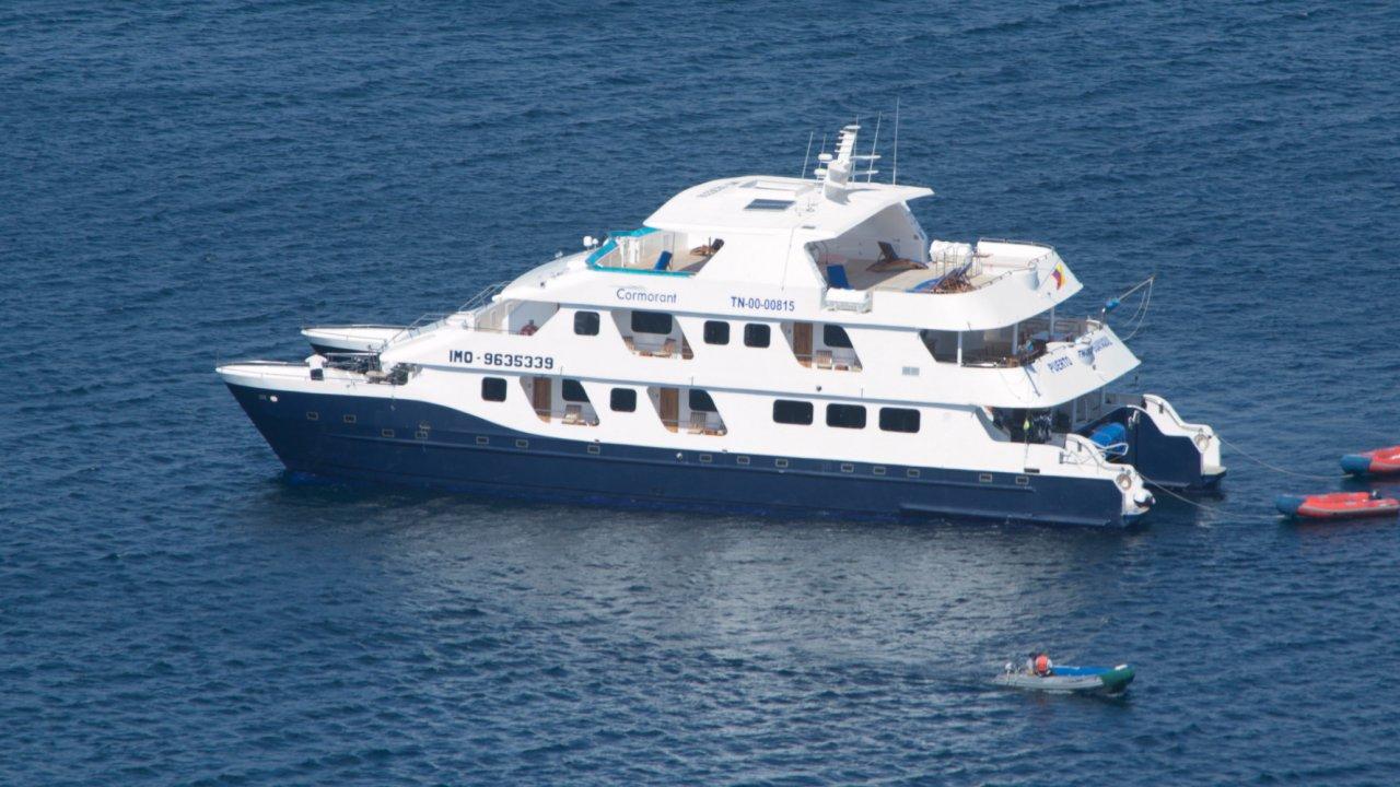 Cormorant cruising catamaran