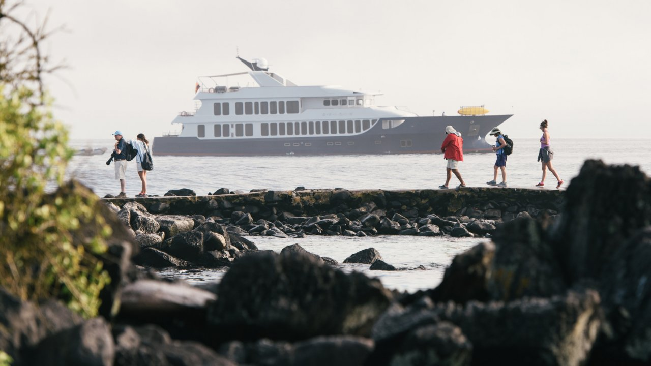Cruise the Galapagos Islands on the Origin