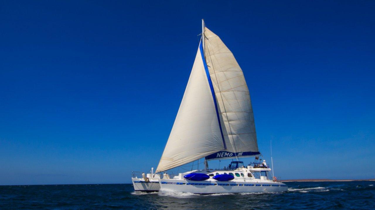 NemoIII Sailing Catamaran Galapagos