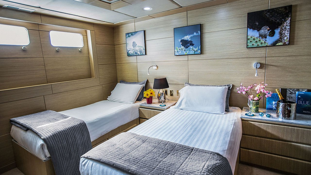Stateroom accommodation on MY Passion Yacht