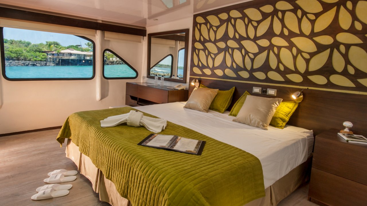 cabin on galaxy catamaran