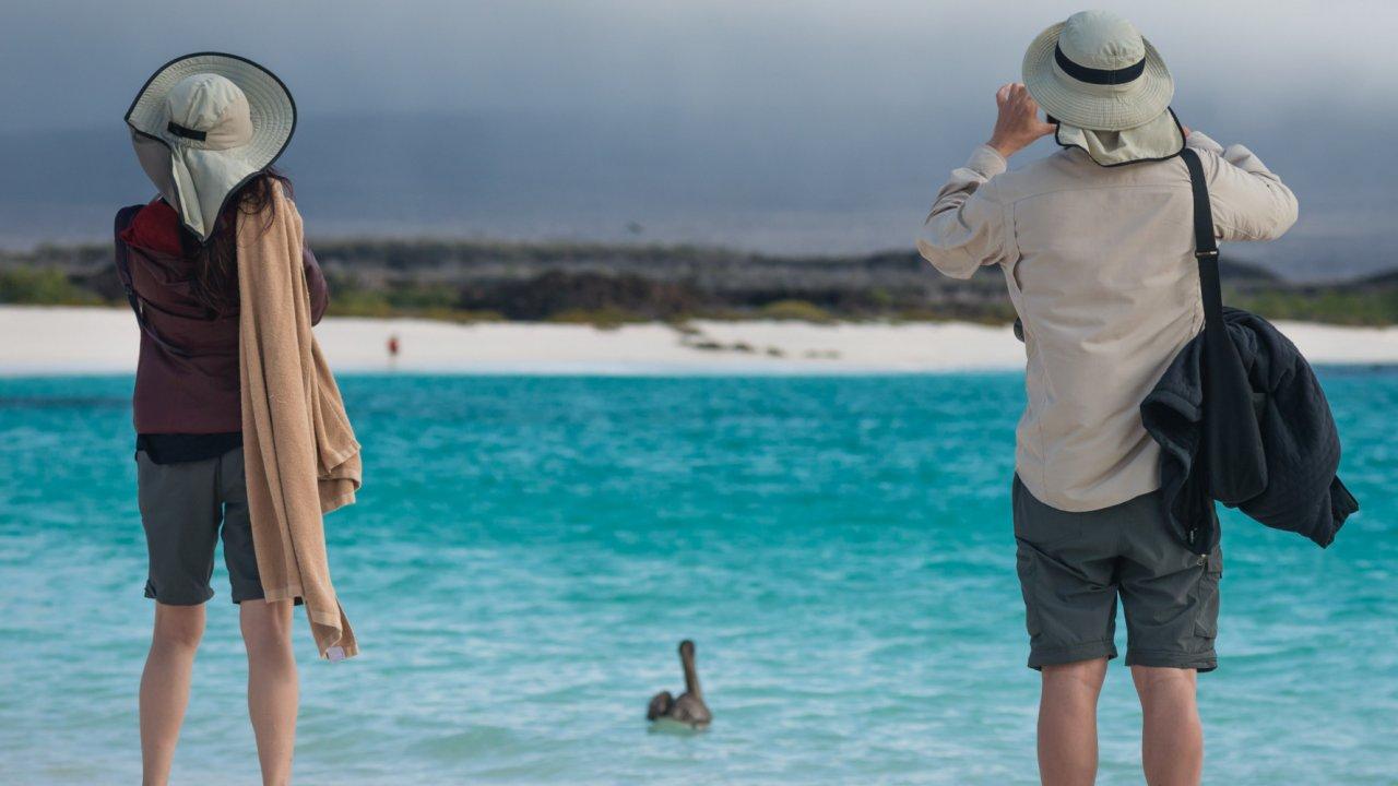 cruise the Galapagos