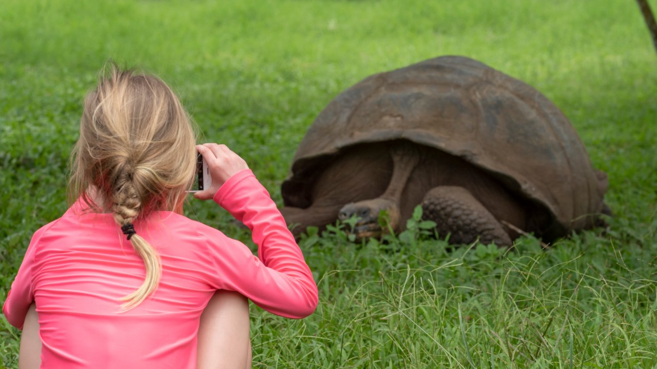 girl taking photo of giant tortoise