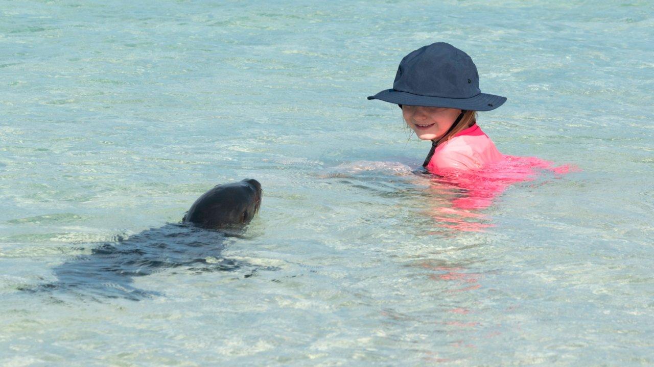 Friendly Galapagos wildlife