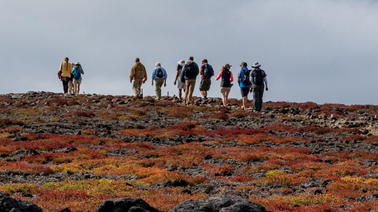 Cruise excursions Galapagos