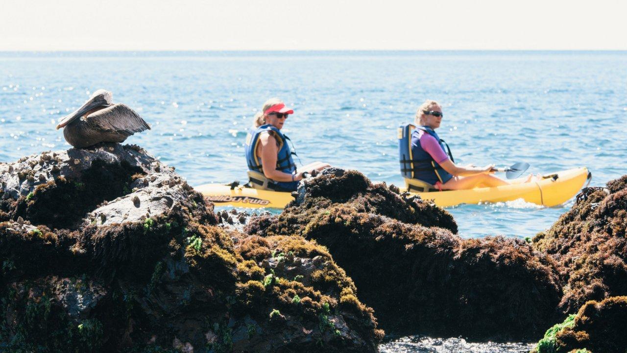 Kayak Galapagos Islands