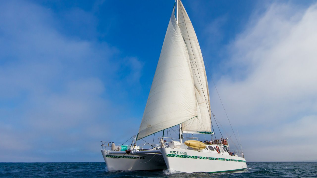 Sailing Catamaran in the Galapagos