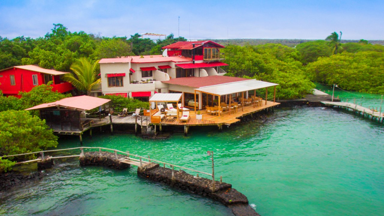 Red mangrove lodge galapagos