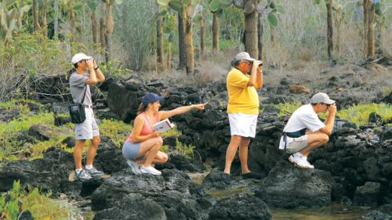 wildlife viewing galapagos