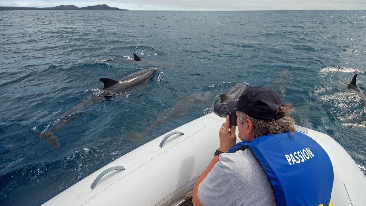 Zodiac excursion in the Galapagos