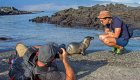 Baby sea lion approaching tourist in Galapagos