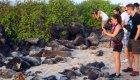 vacation Galapagos