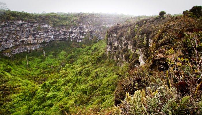 Galápagos Los Gemelos