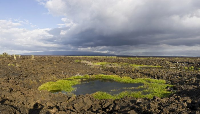 Galápagos Pit Craters